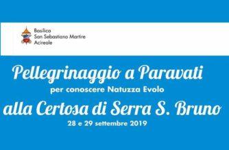 Pellegrinaggio a Paravati e a Serra San Bruno